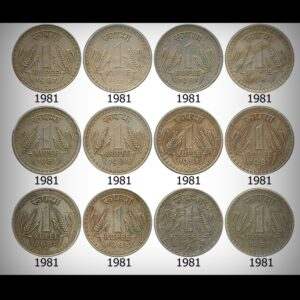 Old Big Dabu 1 Rupee Republic India Coins – set of 12 Coins – Worth Buy