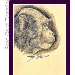 Fountain Pen Art Drawing - Bunder - Monkey